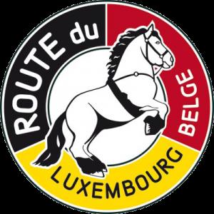 Logo-Routelux-pour-Web-400px